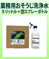 環境洗浄水 加電水(強アルカリ PH13.1以上)5L+スプレー